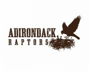 adirondack_raptors_large